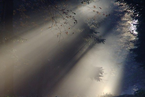 This is the way, walk ye in it. The Spirit's job is to guide.